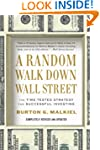 Random Walk Down Wall Street, A