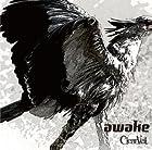 awake [TYPE B](�߸ˤ��ꡣ)