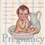 The Little Big Book of Pregnancy (Little Big Book (New York, N.Y.), 12.) (Little Big Books (Welcome))