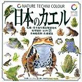 カプセル NATURE TECHNI COLOUR 日本のカエル ノーマル7種セット