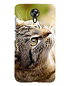 FurnishFantasy Designer Back Case Cover for Micromax Canvas Nitro 4G,Micromax Canvas Nitro 4G E455