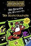 Der Adventskalender - 1000 Gefahren v...