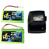 Digital Energy 9.6v RC Battery Charger with 2 Battery Packs