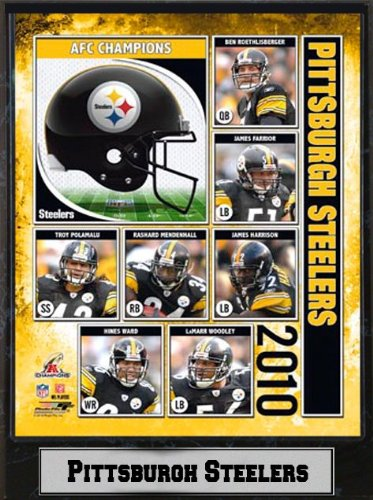 Encore Select 510-FBPitts2010 2010 AFC Champions Pittsburgh Steelers 9X12 Plaque