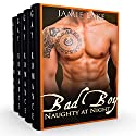 Bad Boy: Naughty at Night: 5 Book Series Audiobook by Jamie Lake Narrated by James Talbot