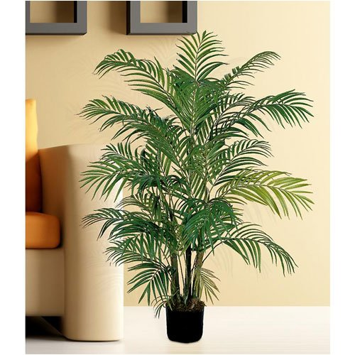 C. Alan 5001 Areca Silk Palm Tree 4′