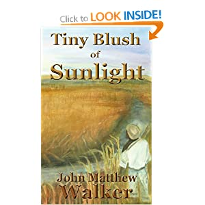 Tiny Blush of Sunlight John Walker