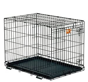 Midwest Life Stages Single-Door Folding Metal Dog Crate by Midwest Homes for Pets