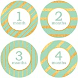 Baby Monthly Stickers Elegant Style Aquarelle And Gold - Milestone Stickers - 1-12 Months - Onesie Stickers -...