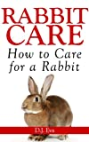 Rabbit Care: How to Care for a Rabbit