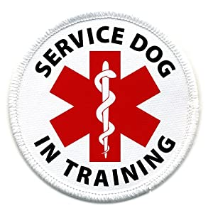 IN TRAINING SERVICE DOG Medical Alert 2.5 inch Sew-on Patch