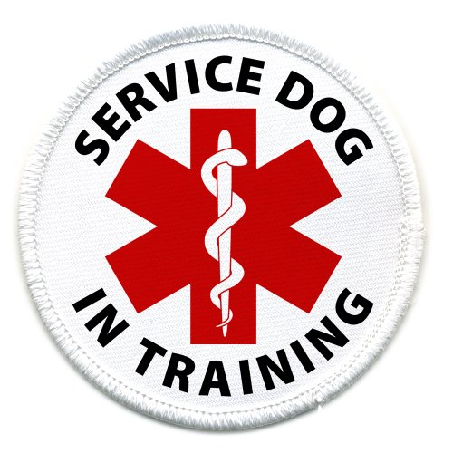Purchase IN TRAINING SERVICE DOG Medical Alert 2.5 inch Sew-on Patch