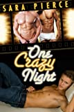 One Crazy Night: Gay Ménage First Time