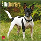 BrownTrout Rat Terriers 2014 Wall