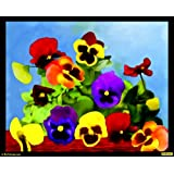 """PixTopper Dance Of Colours 06 Paper Poster(Large 44""""x44"""")"""