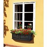 Mayne 4830W Nantucket Window 3 Feet