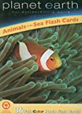 Animals of the Sea Flash Cards: Planet Earth