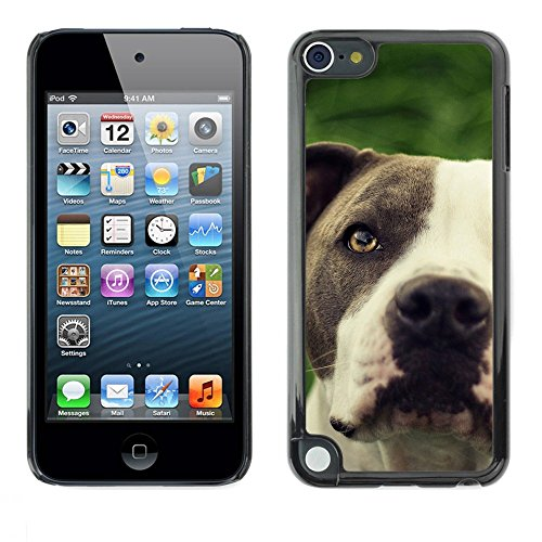 TopCaseStore / Snap On Hard Back Shell Rubber Case Protection Skin Cover - Pitbull Friendly Black White Muzzle Dog - Apple iPod Touch 5