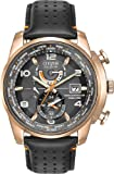 Citizen #AT9013-03H Men's Eco Drive Rose Gold Tone Leather Band Atomic World Time Watch