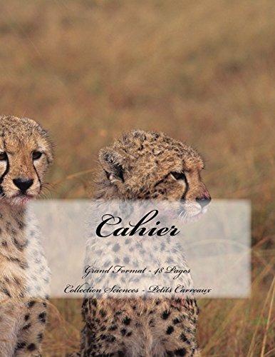 Cahier - Grand Format - 48 pages - Collection Sciences: Petits Carreaux - Design Original 9