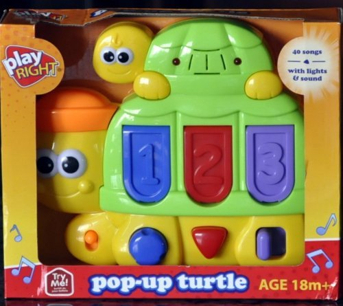 Pop-Up-Turtle By Play Right - 1