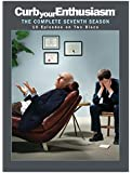 Curb Your Enthusiasm: The Complete Seventh Season (Bilingual)