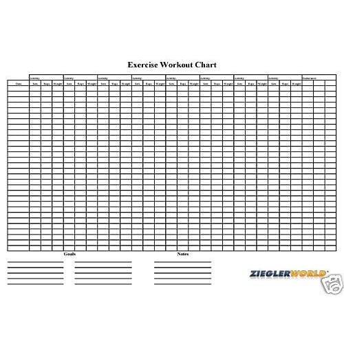 Amazon.com : Laminated Reusable Exercise Workout Wall