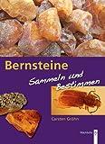 Bernstein: Suchen und sammeln