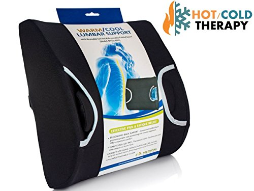 Eva Medical Lumbar Back Support Cushion Pillow with Warm/Cool Gel Pad and Removable Firm Insert (Lumbar Support Car compare prices)