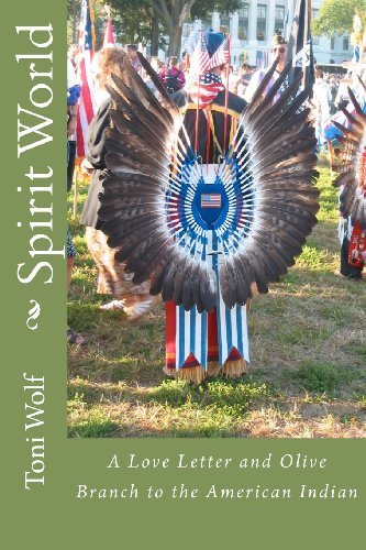 Spirit World: A Love Letter And Olive Branch To The American Indian back-1079422