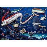深海魚 リアルジグソーパズル A3サイズ 720ピース