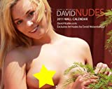 2011 David Nudes Art Nude Calendar (Naked & Innocent Weekly)