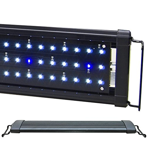 beamswork-led-1w-hi-lumen-aquarium-light-marine-fowlr-cichlid-dhl-48