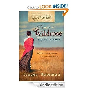 Love Finds You in Wildrose, ND