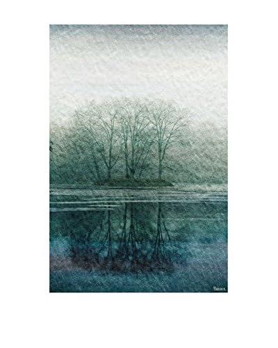 Parvez Taj Apple Lake