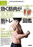 効く筋肉が見える 筋トレ図鑑 ?自重トレーニングで30才の体を取り戻そう (大人の自由時間mini)