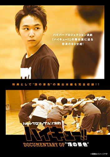 ハイパープロジェクション演劇「ハイキュー!!」 Documentary of ``頂の景色'' [DVD]