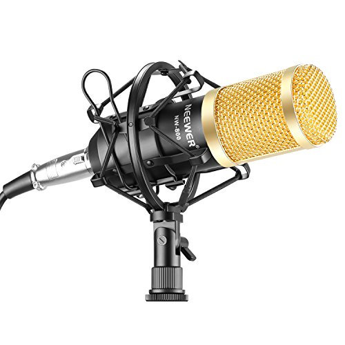 neewer-nw-800-professional-studio-broadcasting-recording-microphone-set-including-1nw-800-profession