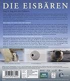 Image de Die Eisbären-Aug in Aug mit Den Eisbären [Blu-ray] [Import allemand]