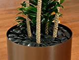 """Synthetic River Rock - Decorative Black Obsidian Faux Indoor Landscaping Stones (Approx. 1.5"""" to 2.5"""" Diameter Flat Black Chips) by Thor Decor - Made in the USA (2 lb)"""