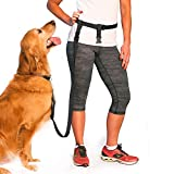 The Buddy System Made in USA Adjustable Hands Free Leash, Great for Running, Regular Dog System, Regular, Black
