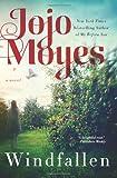 'Windfallen' von Jojo Moyes