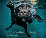 Underwater Dogs by Casteel, Seth on 25/10/2012 Unabridged edition Seth Casteel