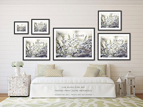 Teal bathroom decor set of 4 photographs beach and rustic 20 discount art for bath in for Anna s linens bathroom accessories