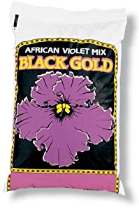 Black Gold-natures-sungro 4 Quart African Violet Mix 1310502 - Pack of 9