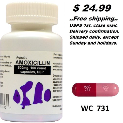 Amoxicillin 500mg koi best adderall xr potentiator for Fish mox amazon