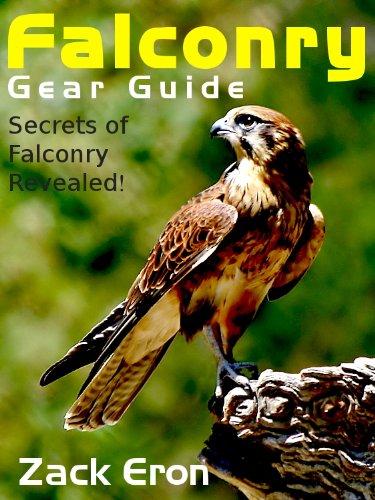 Falconry Gear Guide - Secrets of Falconry Revealed