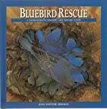 Bluebird Rescue (A Harrowsmith Country Life Nature Guide)
