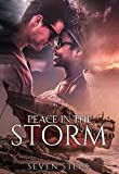 Peace in the Storm (A Second Chance Romance)