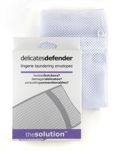 delicates-defender-lingerie-laundering-envelopes-1-piece-mesh-wash-bag